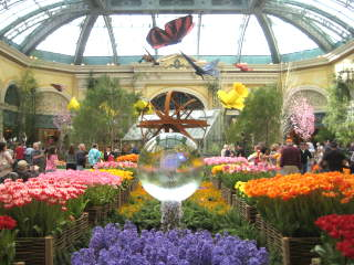 Conservatory2009s