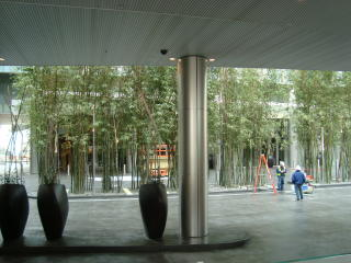 Citycentersoto10