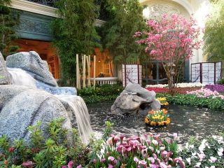 ベラージオ日本風庭園